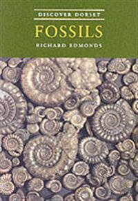 Discover dorset fossils
