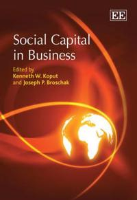 Social Capital in Business