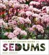 Plant Lovers Sedums Hc