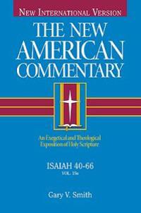 Niv the New American Commentary Isaiah 40-66