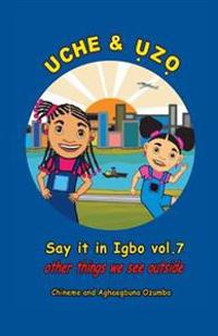 Uche and Uzo Say It in Igbo Vol.7: Vol.7 Other Things We See Outside