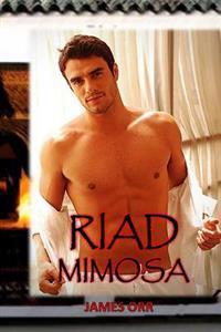 Riad Mimosa: Spanish Version