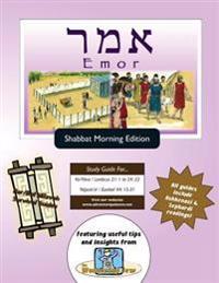 Bar/Bat Mitzvah Survival Guides: Emor (Shabbat Am)