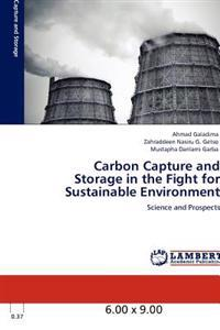 Carbon Capture and Storage in the Fight for Sustainable Environment