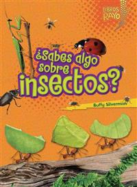 Sabes Algo Sobre Insectos? (Do You Know about Insects?)