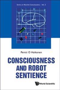Consciousness and Robot Sentience