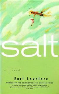 Salt a Novel