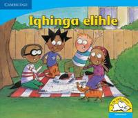 Little Library Numeracy: A Good Plan IsiNdebele version