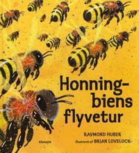 Honningbiens flyvetur