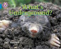 What's Underground