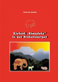 "Elefant ""Chocolate"" in Den Drakensbergen"