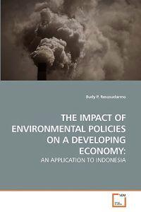 The Impact of Environmental Policies on a Developing Economy