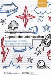 Jugendliche Lebenswelten: Perspektiven Fur Politik, Padagogik Und Gesellschaft