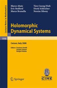 Holomorphic Dynamical Systems