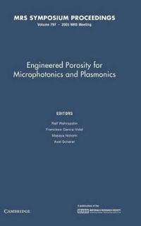 Engineered Porosity for Microphotonics and Plasmonics