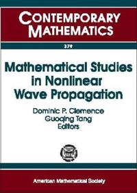 Mathematical Studies In Nonlinear Wave Propagation
