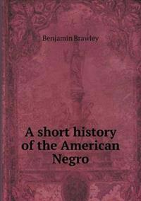 A Short History of the American Negro