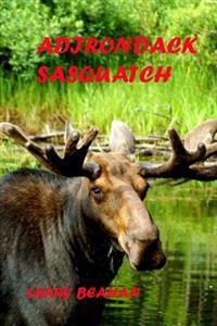 Adirondack Sasquatch