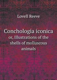 Conchologia Iconica Or, Illustrations of the Shells of Molluscous Animals