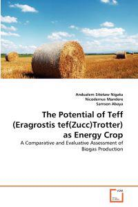 The Potential of Teff (Eragrostis Tef(zucc)Trotter) as Energy Crop