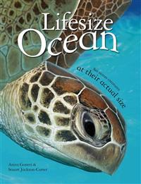 Lifesize: Ocean: See Ocean Creatures at Their Actual Size