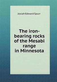 The Iron-Bearing Rocks of the Mesabi Range in Minnesota
