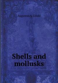 Shells and Mollusks