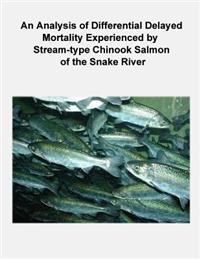 An Analysis of Differential Delayed Mortality Experienced by Stream-Type Chinook Salmon of the Snake River
