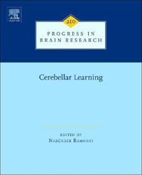 Cerebellar Learning