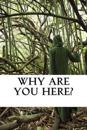 Why Are You Here?
