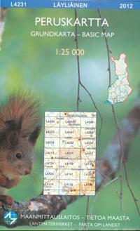 Peruskartta L4231 Läyliäinen 1:25 000