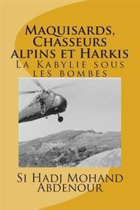 Maquisards, Chasseurs Alpins Et Harkis: La Kabylie Sous Les Bombes