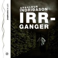 Irrganger - Arnaldur Indridason pdf epub