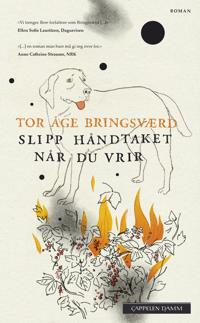 Slipp håndtaket når du vrir - Tor Åge Bringsværd | Ridgeroadrun.org