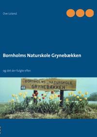 Bornholms Naturskole Grynebækken