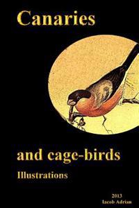 Canaries and Cage-Birds Illustrations