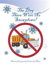 The Day There Were No Snowplows