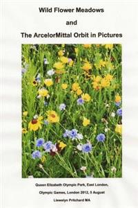 Wild Flower Meadows and the Arcelormittal Orbit in Pictures: Olympic Legacy - Llewelyn Pritchard pdf epub