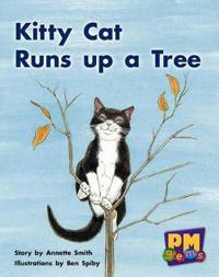 Kitty cat runs up a tree