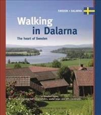 Walking in Dalarna