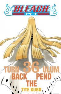 Bleach 36