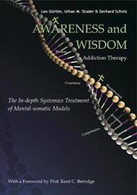 Awareness and Wisdom in Addiction Therapy: The In-Depth Systemics Treatment of Mental-Somatic Models