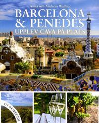 Barcelona & Penedèz : upplev Cava på plats
