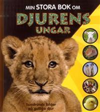 Min stora bok om djurens ungar