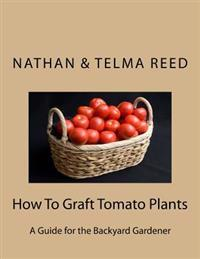 How to Graft Tomato Plants: A Guide for the Backyard Gardener