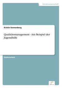 Qualitatsmanagement - Am Beispiel Der Jugendhilfe