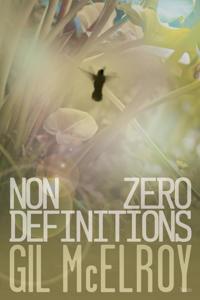 Nonzero Definitions