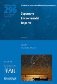Supernova Environmental Impacts