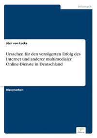 Ursachen Fur Den Verzogerten Erfolg Des Internet Und Anderer Multimedialer Online-Dienste in Deutschland