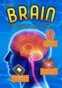 Your brain - understand it with numbers